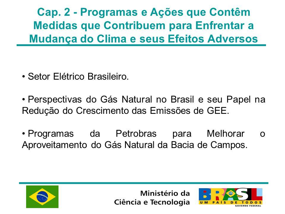 Cap. 2 - Programas e Ações que Contêm Medidas que Contribuem para Enfrentar a Mudança do Clima e seus Efeitos Adversos Setor Elétrico Brasileiro. Pers