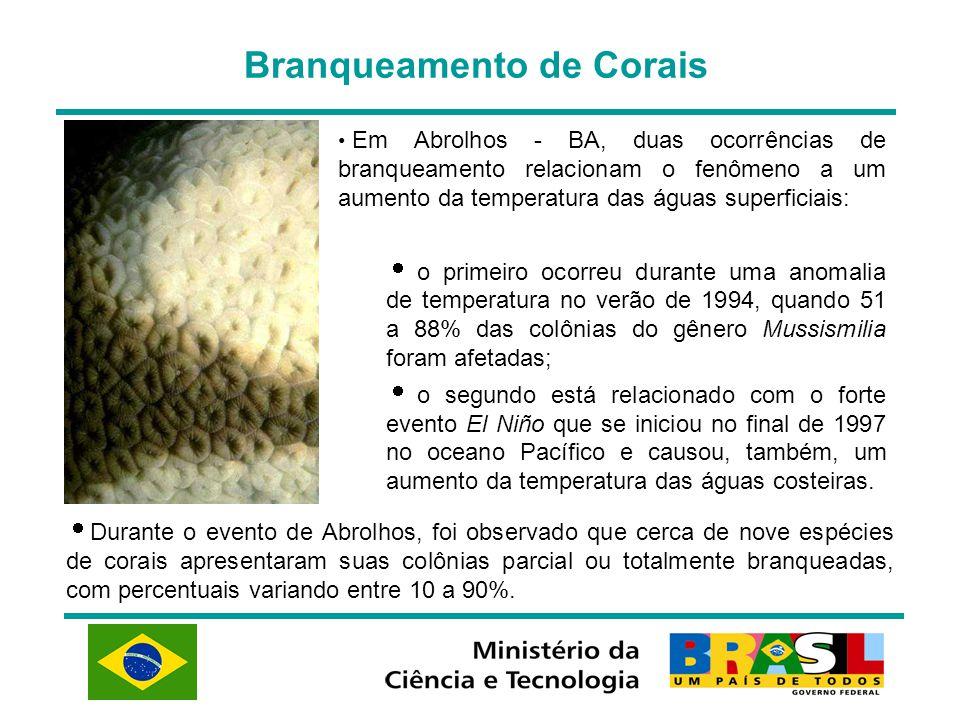 Branqueamento de Corais  Durante o evento de Abrolhos, foi observado que cerca de nove espécies de corais apresentaram suas colônias parcial ou total