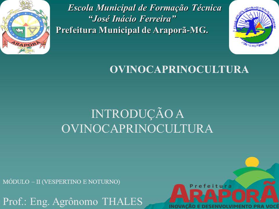 Escola Municipal de Formação Técnica José Inácio Ferreira Escola Municipal de Formação Técnica José Inácio Ferreira Prefeitura Municipal de Araporã-MG.