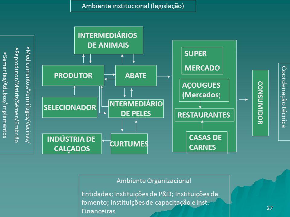 Ambiente institucional (legislação) Medicamentos/Vermífugos/Vacinas/ Reprodutor/Matriz/Sêmen/Embrião Sementes/Adubos/Implementos Coordenação técnica Ambiente Organizacional Entidades; Instituições de P&D; Instituições de fomento; Instituições de capacitação e Inst.