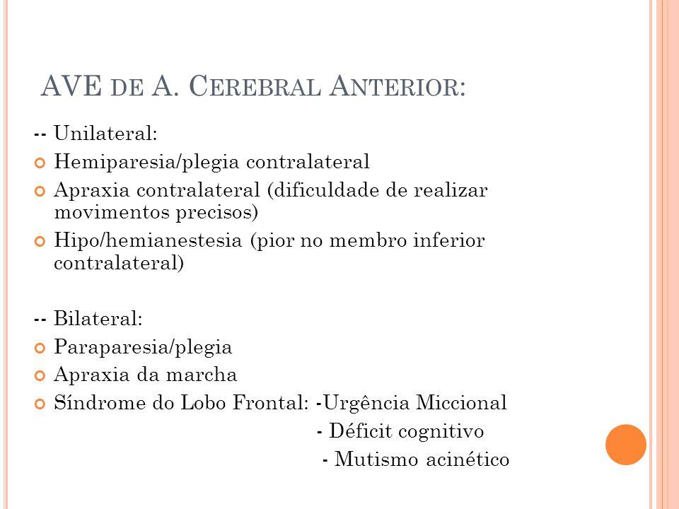AVE DE A. C EREBRAL A NTERIOR : -- Unilateral: Hemiparesia/plegia contralateral Apraxia contralateral (dificuldade de realizar movimentos precisos) Hi