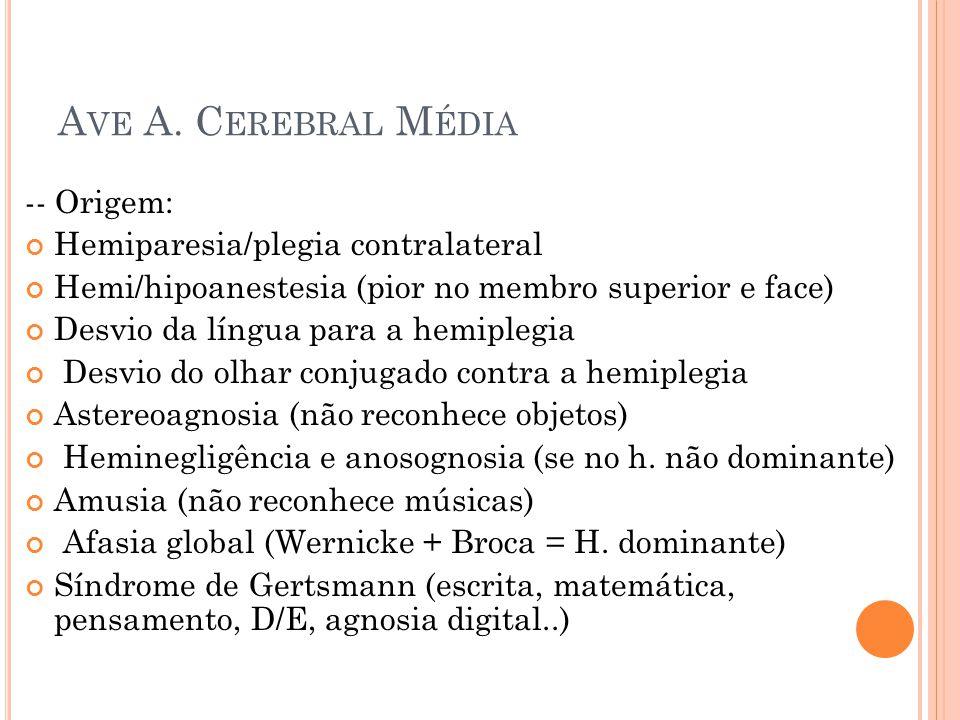 A VE A. C EREBRAL M ÉDIA -- Origem: Hemiparesia/plegia contralateral Hemi/hipoanestesia (pior no membro superior e face) Desvio da língua para a hemip