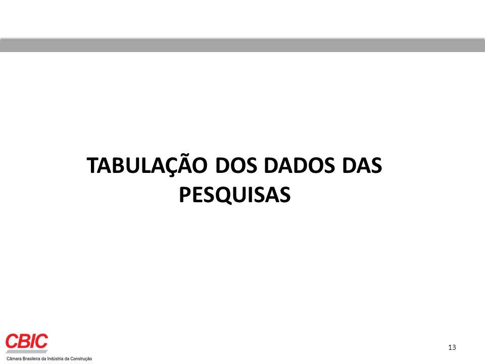 TABULAÇÃO DOS DADOS DAS PESQUISAS 13