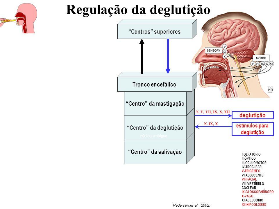 """""""Centro"""" da salivação """"Centro"""" da deglutição """"Centro"""" da mastigação Tronco encefálico """"Centros"""" superiores deglutição estímulos para deglutição N. V,"""