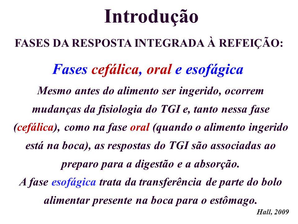 Introdução Mesmo antes do alimento ser ingerido, ocorrem mudanças da fisiologia do TGI e, tanto nessa fase (cefálica), como na fase oral (quando o ali