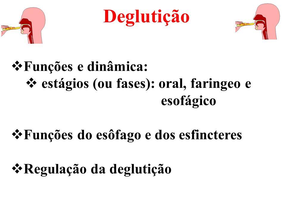  Funções e dinâmica:  estágios (ou fases): oral, faringeo e esofágico  Funções do esôfago e dos esfincteres  Regulação da deglutição Deglutição