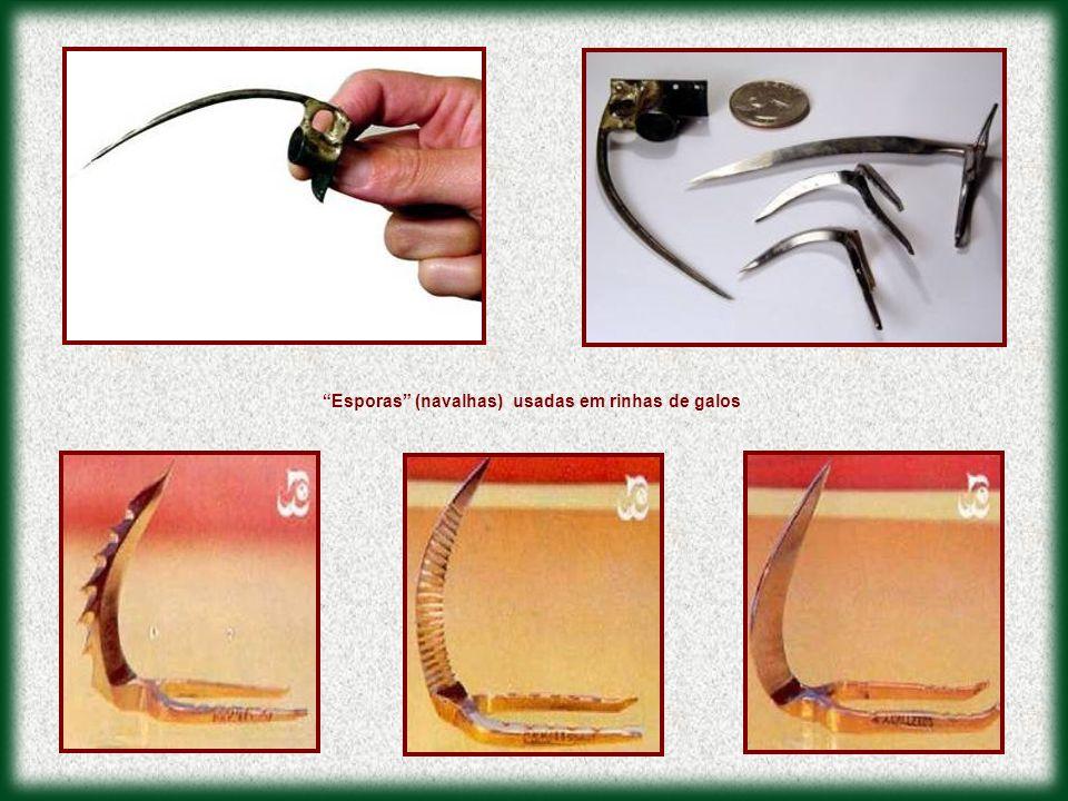 """""""Esporas"""" (navalhas) usadas em rinhas de galos"""