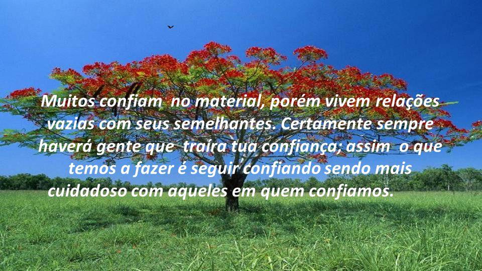 Ter fé é CONFIAR, porém confiar não somente nas coisas, mas sim o que é mais importante...