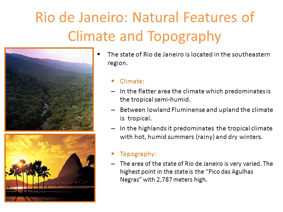 Rio de Janeiro: Vegetation and Hydrography  Vegetation: – Before the last occupation held in Rio de Janeiro State for livestock development, basically three variations of vegetation were identified:  on the coast and around, a swamp and the Atlantic Forest.