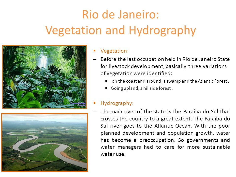 Rio de Janeiro: Vegetation and Hydrography  Vegetation: – Before the last occupation held in Rio de Janeiro State for livestock development, basicall