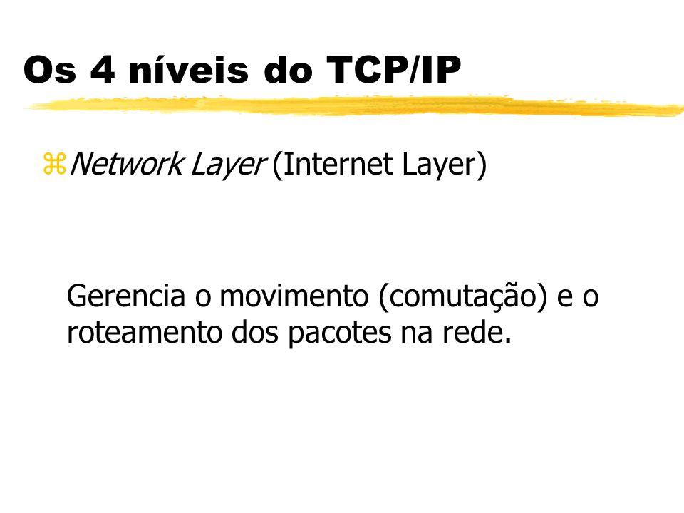 zNetwork Layer (Internet Layer) Gerencia o movimento (comutação) e o roteamento dos pacotes na rede. Os 4 níveis do TCP/IP