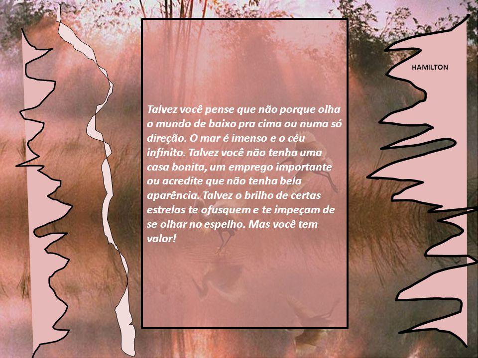 HAMILTON Você tem valor ! Letícia Thompson hamilton9@pop.com.br