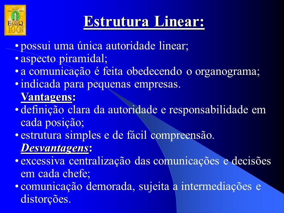 Estrutura Linear: possui uma única autoridade linear; aspecto piramidal; a comunicação é feita obedecendo o organograma; indicada para pequenas empres