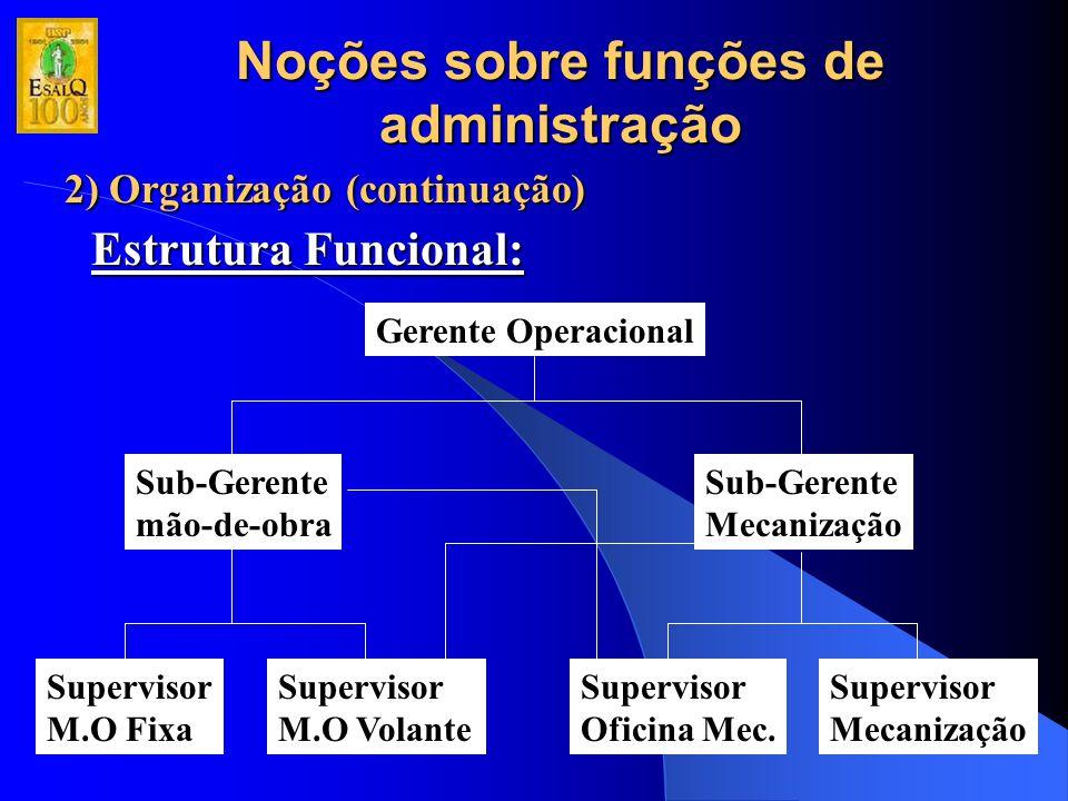 Noções sobre funções de administração 2) Organização (continuação) Estrutura Funcional: Gerente Operacional Sub-Gerente mão-de-obra Sub-Gerente Mecani