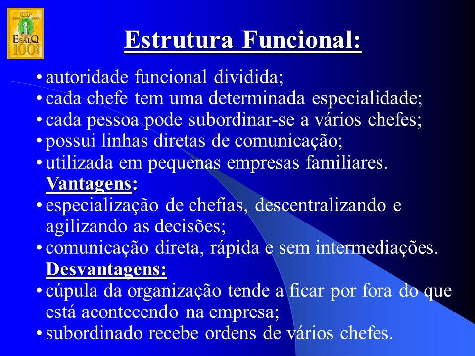 Estrutura Funcional: autoridade funcional dividida; cada chefe tem uma determinada especialidade; cada pessoa pode subordinar-se a vários chefes; poss