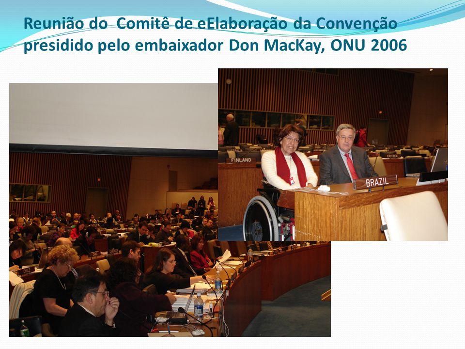 Reunião do Comitê de eElaboração da Convenção presidido pelo embaixador Don MacKay, ONU 2006