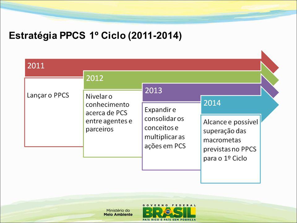 Estratégia PPCS 1º Ciclo (2011-2014)