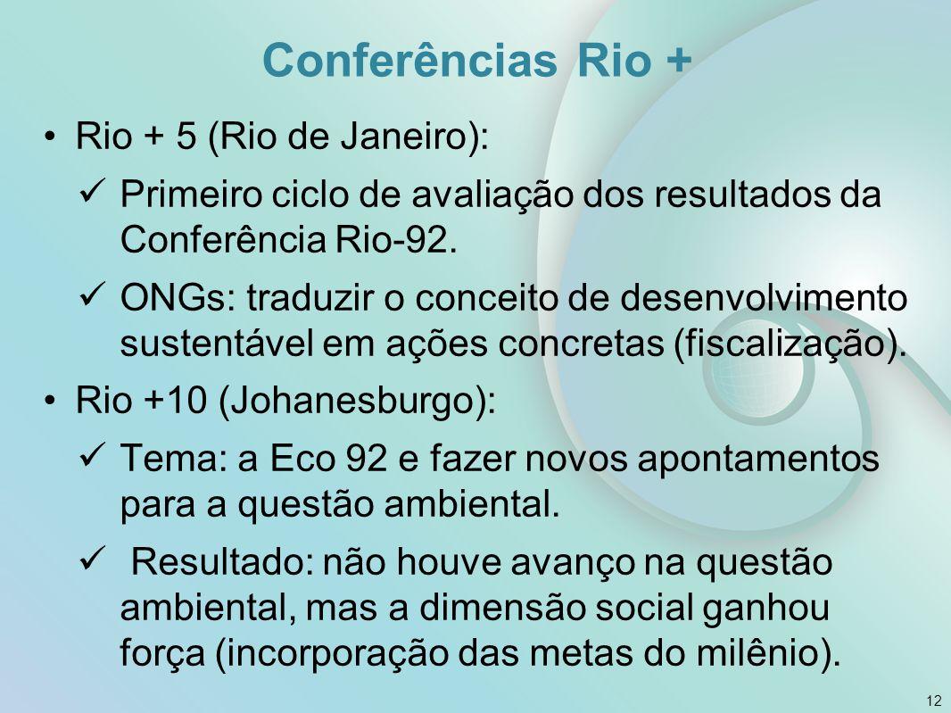 Conferências Rio + Rio + 5 (Rio de Janeiro): Primeiro ciclo de avaliação dos resultados da Conferência Rio-92. ONGs: traduzir o conceito de desenvolvi