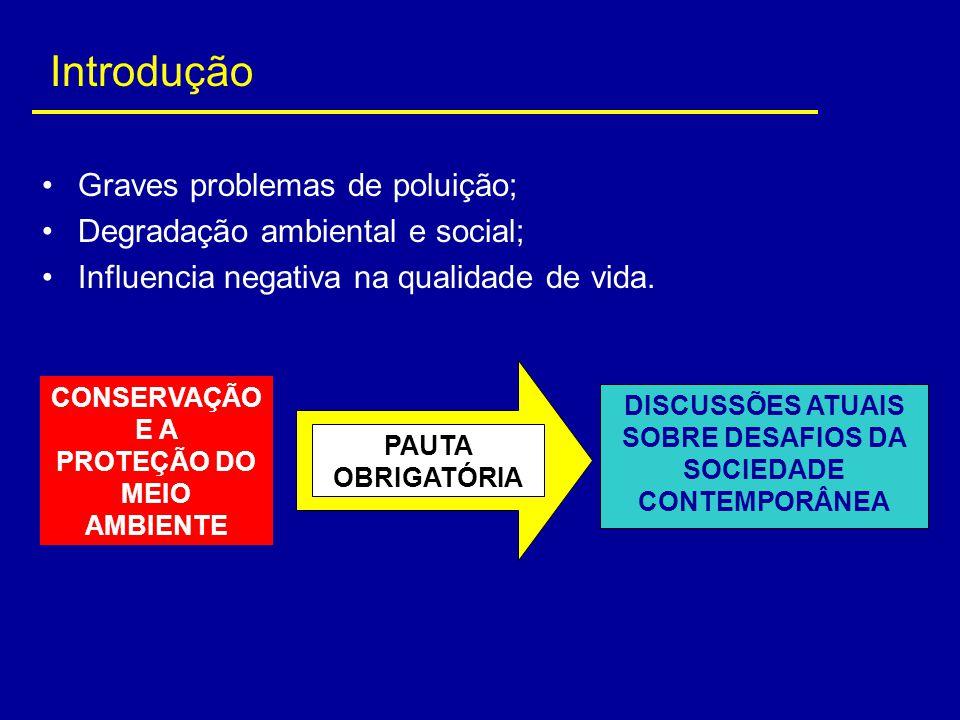 Graves problemas de poluição; Degradação ambiental e social; Influencia negativa na qualidade de vida. CONSERVAÇÃO E A PROTEÇÃO DO MEIO AMBIENTE PAUTA