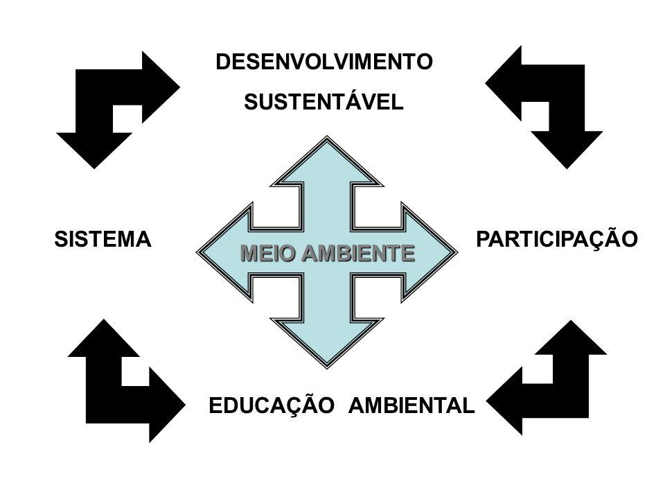 MEIO AMBIENTE SISTEMA DESENVOLVIMENTO SUSTENTÁVEL PARTICIPAÇÃO EDUCAÇÃO AMBIENTAL