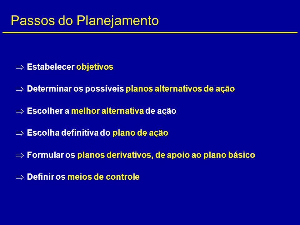  Estabelecer objetivos  Determinar os possíveis planos alternativos de ação  Escolher a melhor alternativa de ação  Escolha definitiva do plano de