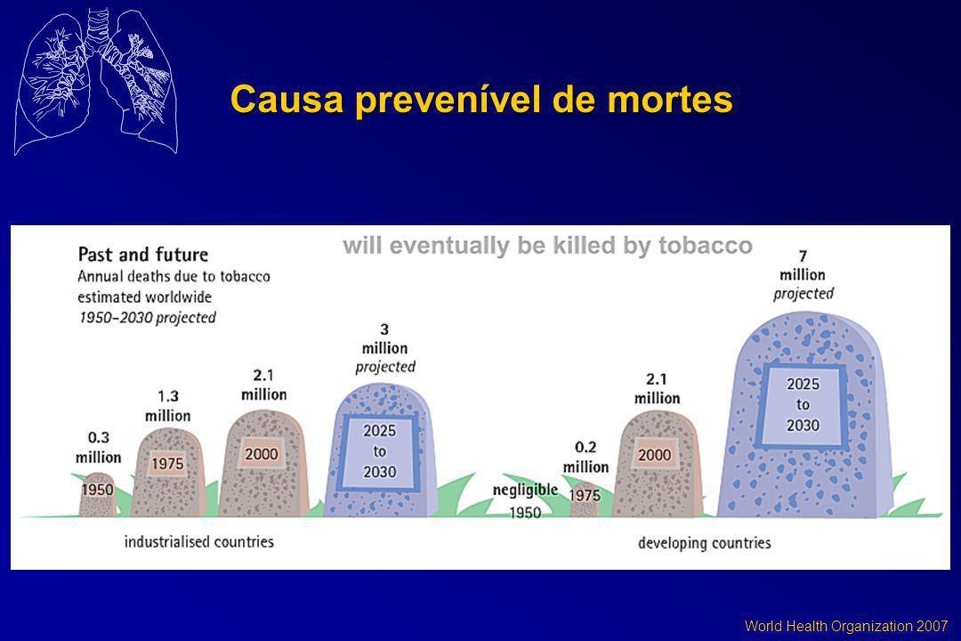 World Health Organization 2007 Causa prevenível de mortes