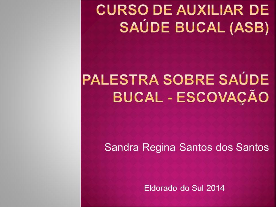 Sandra Regina Santos dos Santos Eldorado do Sul 2014