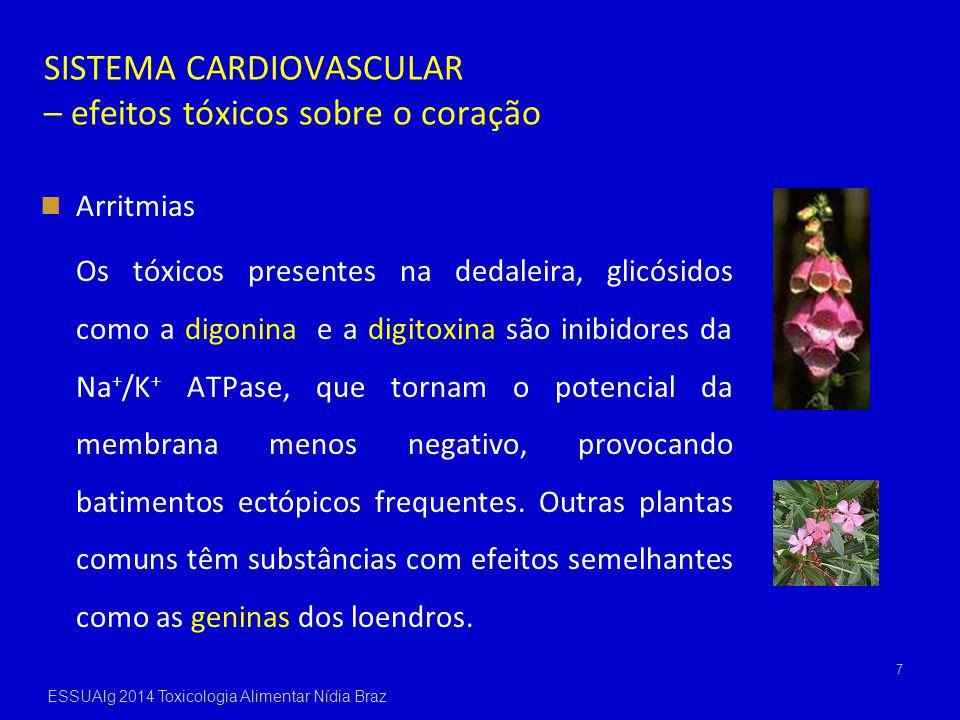 SISTEMA CARDIOVASCULAR – efeitos tóxicos sobre o coração Arritmias Os tóxicos presentes na dedaleira, glicósidos como a digonina e a digitoxina são in