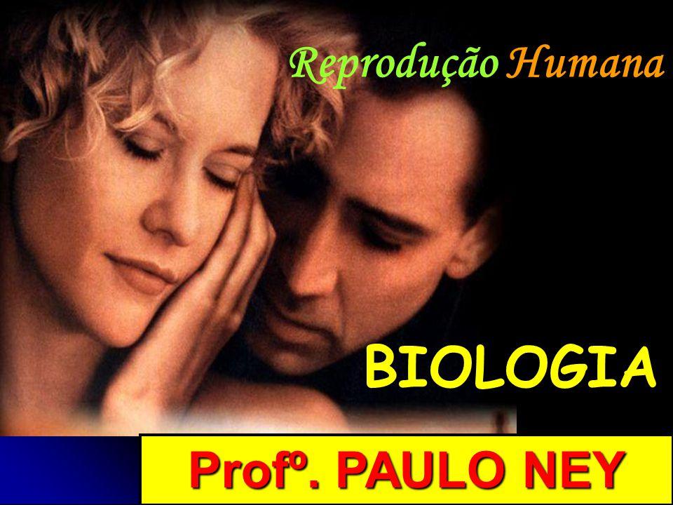 Condições de fecundação Presença de espermatozóides nas vias genitais femininas O movimento de um espermatozóide