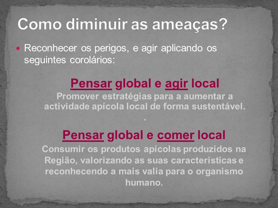 Reconhecer os perigos, e agir aplicando os seguintes corolários: Pensar global e agir local Promover estratégias para a aumentar a actividade apícola