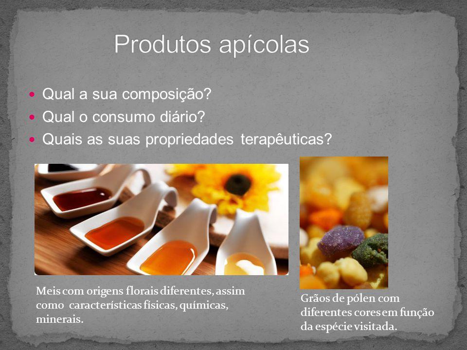 Qual a sua composição? Qual o consumo diário? Quais as suas propriedades terapêuticas? Meis com origens florais diferentes, assim como características