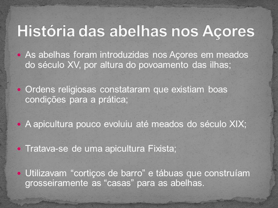 ApitoxinaGeleia realPólenPolinizaçãoMel