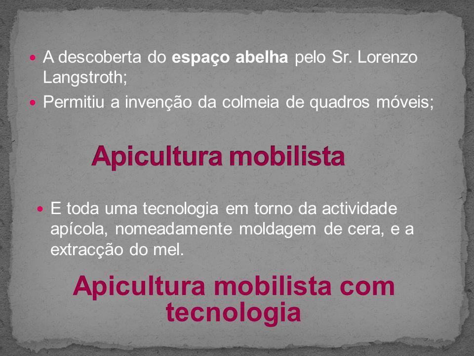 A descoberta do espaço abelha pelo Sr. Lorenzo Langstroth; Permitiu a invenção da colmeia de quadros móveis; Apicultura mobilista com tecnologia E tod