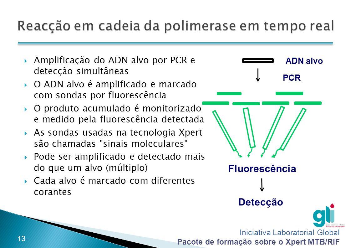 Iniciativa Laboratorial Global Pacote de formação sobre o Xpert MTB/RIF -13- ADN alvo PCR Fluorescência Detecção  Amplificação do ADN alvo por PCR e detecção simultâneas  O ADN alvo é amplificado e marcado com sondas por fluorescência  O produto acumulado é monitorizado e medido pela fluorescência detectada  As sondas usadas na tecnologia Xpert são chamadas sinais moleculares  Pode ser amplificado e detectado mais do que um alvo (múltiplo)  Cada alvo é marcado com diferentes corantes