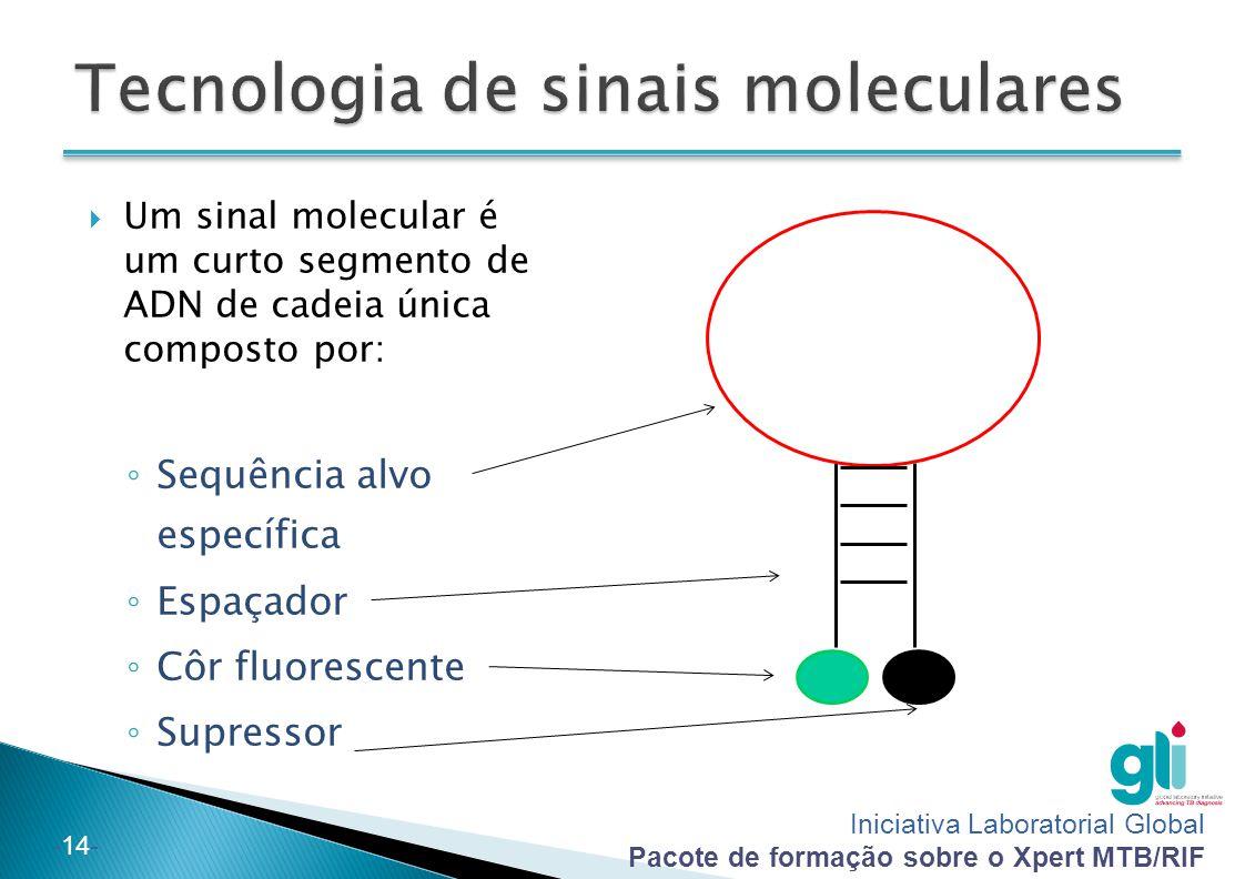 Iniciativa Laboratorial Global Pacote de formação sobre o Xpert MTB/RIF -14-  Um sinal molecular é um curto segmento de ADN de cadeia única composto por: ◦ Sequência alvo específica ◦ Espaçador ◦ Côr fluorescente ◦ Supressor
