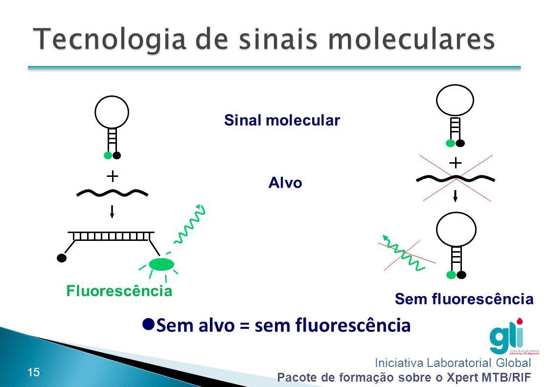 Iniciativa Laboratorial Global Pacote de formação sobre o Xpert MTB/RIF -15- Sinal molecular Alvo Fluorescência Sem fluorescência Sem alvo = sem fluor
