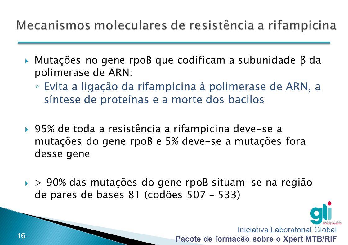 Iniciativa Laboratorial Global Pacote de formação sobre o Xpert MTB/RIF -16-  Mutações no gene rpoB que codificam a subunidade β da polimerase de ARN: ◦ Evita a ligação da rifampicina à polimerase de ARN, a síntese de proteínas e a morte dos bacilos  95% de toda a resistência a rifampicina deve-se a mutações do gene rpoB e 5% deve-se a mutações fora desse gene  > 90% das mutações do gene rpoB situam-se na região de pares de bases 81 (codões 507 – 533)