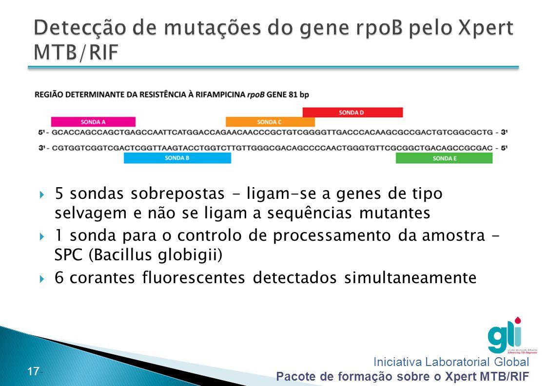 Iniciativa Laboratorial Global Pacote de formação sobre o Xpert MTB/RIF -17-  5 sondas sobrepostas - ligam-se a genes de tipo selvagem e não se ligam a sequências mutantes  1 sonda para o controlo de processamento da amostra - SPC (Bacillus globigii)  6 corantes fluorescentes detectados simultaneamente