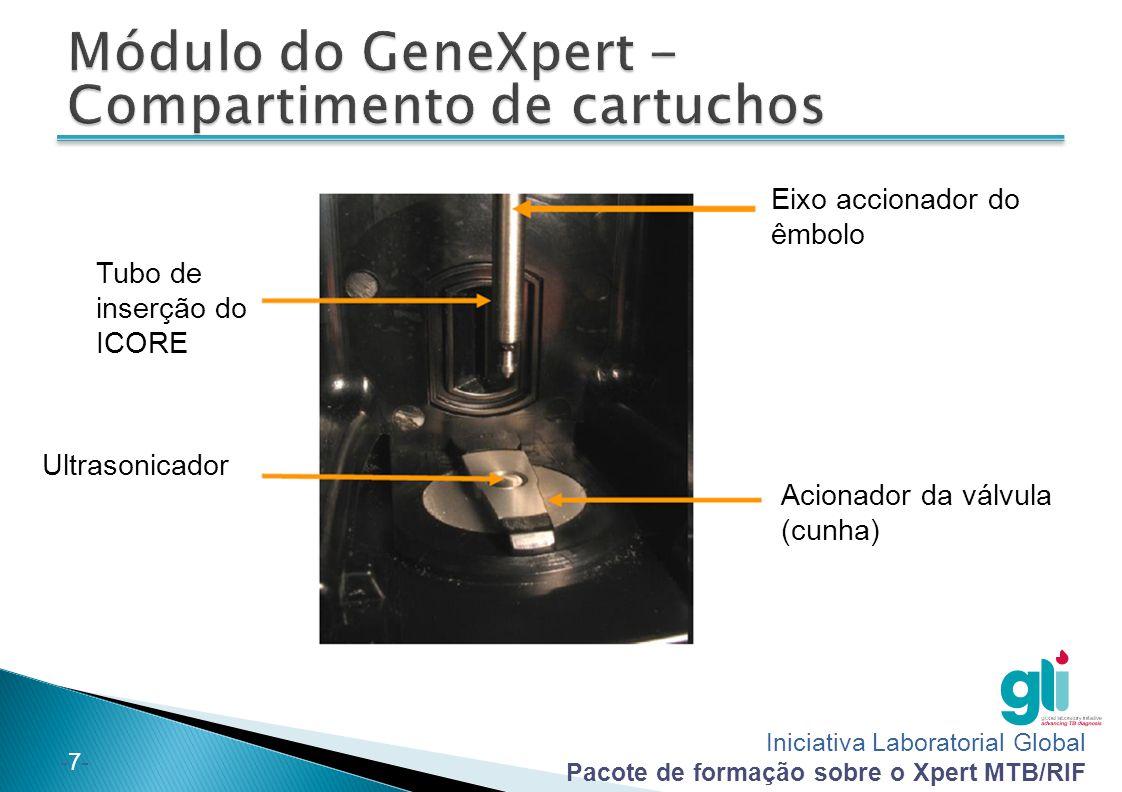 Iniciativa Laboratorial Global Pacote de formação sobre o Xpert MTB/RIF -7--7- Tubo de inserção do ICORE Ultrasonicador Eixo accionador do êmbolo Acionador da válvula (cunha)