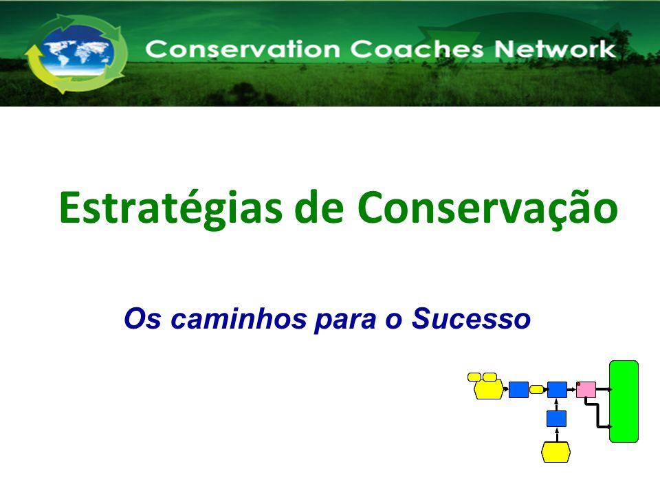 Estratégias de Conservação Os caminhos para o Sucesso Rede de Treinadores em Conservação Capacitando Novos Treinadores