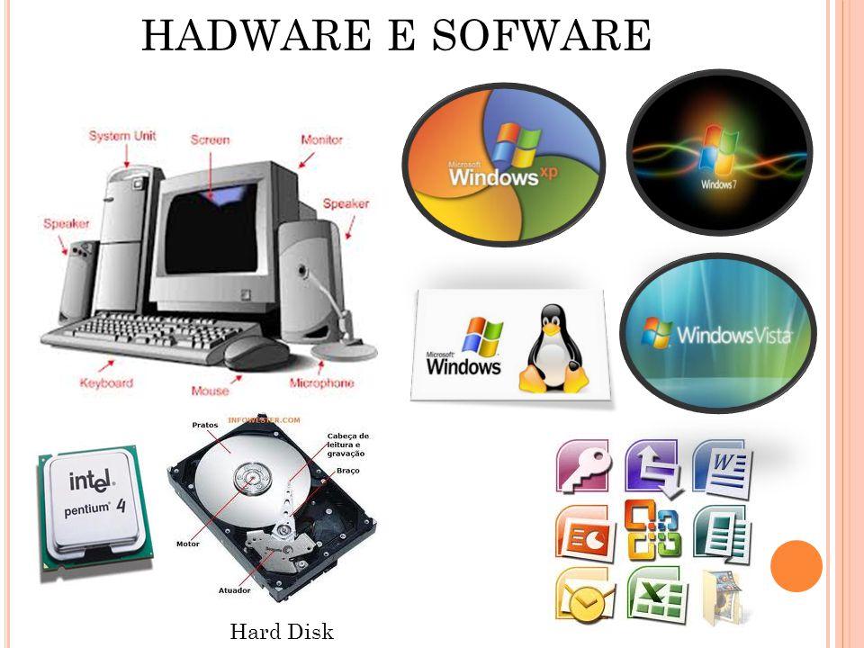 HADWARE E SOFWARE Hard Disk