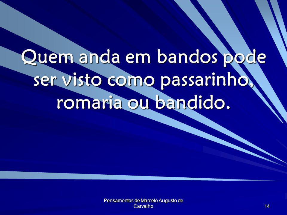 Pensamentos de Marcelo Augusto de Carvalho 14 Quem anda em bandos pode ser visto como passarinho, romaria ou bandido.
