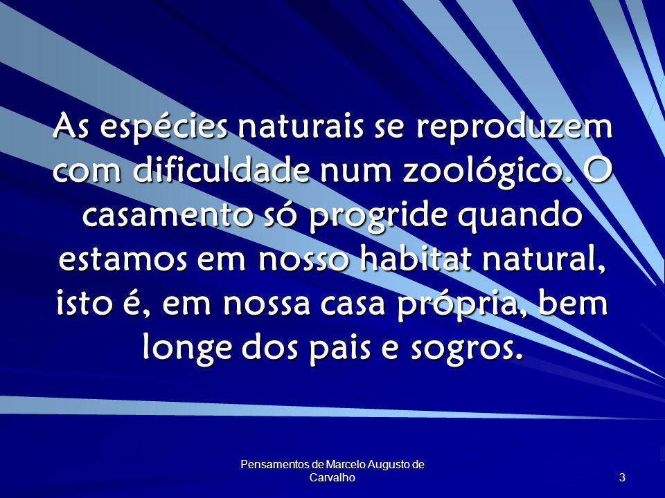 Pensamentos de Marcelo Augusto de Carvalho 3 As espécies naturais se reproduzem com dificuldade num zoológico. O casamento só progride quando estamos
