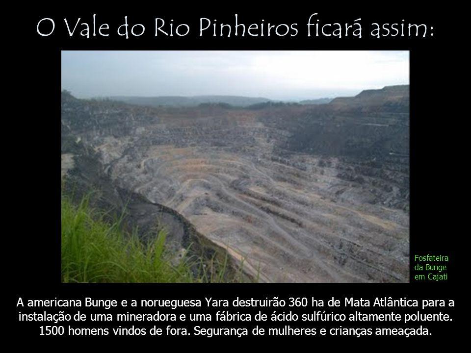 O Vale do Rio Pinheiros ficará assim: A americana Bunge e a norueguesa Yara destruirão 360 ha de Mata Atlântica para a instalação de uma mineradora e