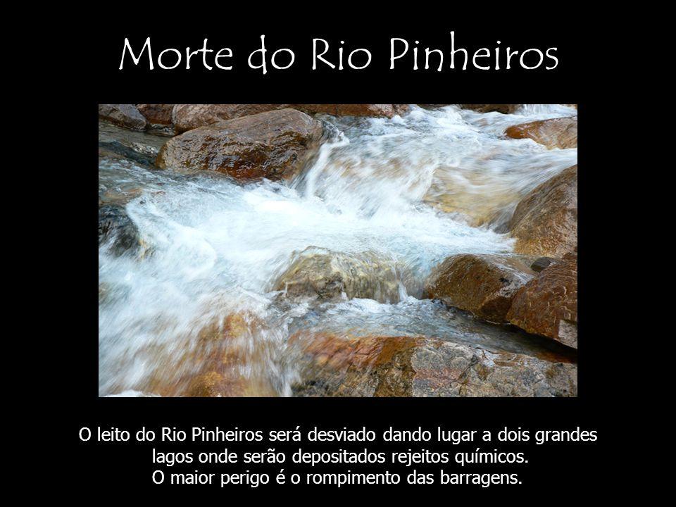 Morte do Rio Pinheiros O leito do Rio Pinheiros será desviado dando lugar a dois grandes lagos onde serão depositados rejeitos químicos. O maior perig