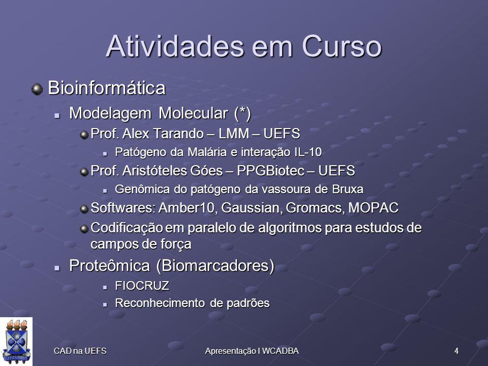 4 CAD na UEFSApresentação I WCADBA Atividades em Curso Bioinformática Modelagem Molecular (*) Modelagem Molecular (*) Prof.
