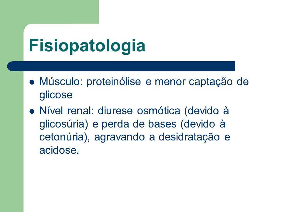 Fisiopatologia Músculo: proteinólise e menor captação de glicose Nível renal: diurese osmótica (devido à glicosúria) e perda de bases (devido à cetonúria), agravando a desidratação e acidose.