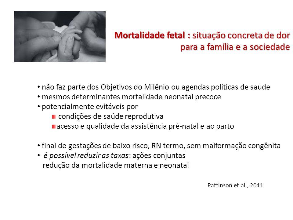 Mortalidade fetal : situação concreta de dor para a família e a sociedade não faz parte dos Objetivos do Milênio ou agendas políticas de saúde mesmos