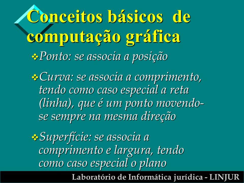 Laboratório de Informática jurídica - LINJUR Conceitos básicos de computação gráfica v Ponto: se associa a posição v Curva: se associa a comprimento,