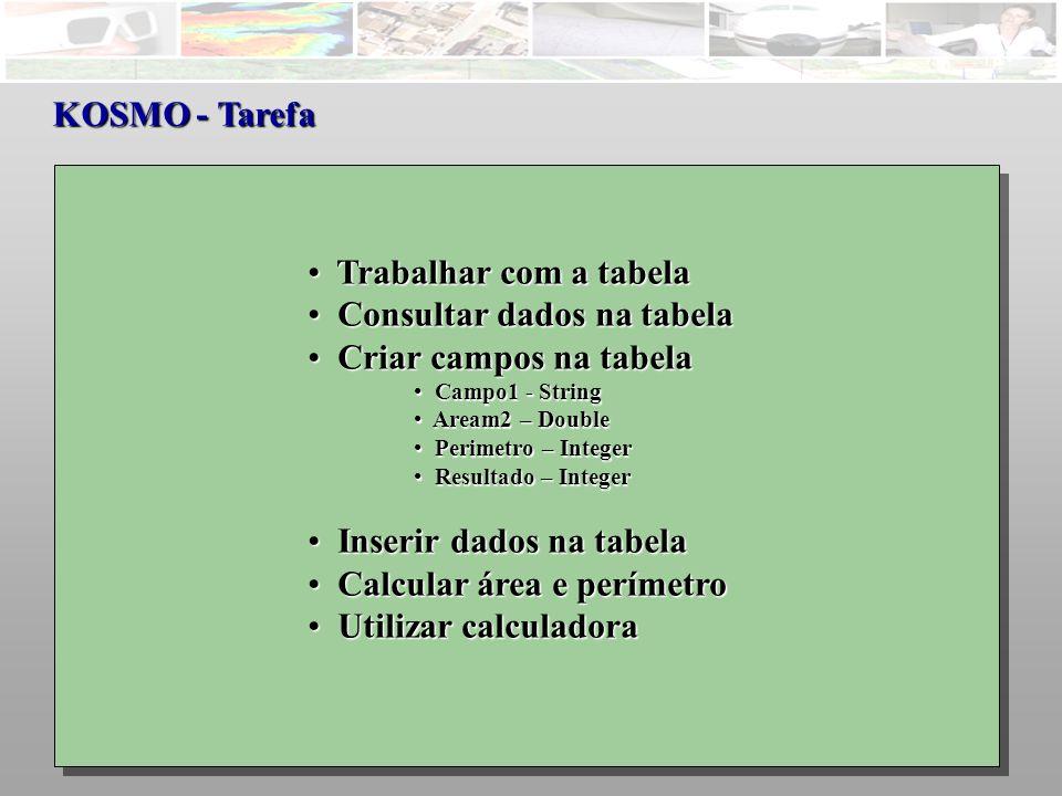 KOSMO - Tarefa Trabalhar com a tabela Trabalhar com a tabela Consultar dados na tabela Consultar dados na tabela Criar campos na tabela Criar campos na tabela Campo1 - String Campo1 - String Aream2 – Double Aream2 – Double Perimetro – Integer Perimetro – Integer Resultado – Integer Resultado – Integer Inserir dados na tabela Inserir dados na tabela Calcular área e perímetro Calcular área e perímetro Utilizar calculadora Utilizar calculadora